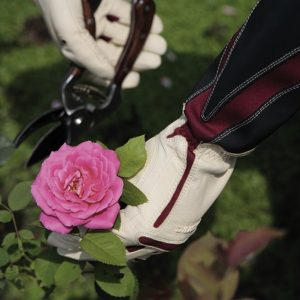 Bionic Rose Gardening Gloves