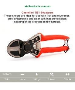 Castellari TI91 Secateurs